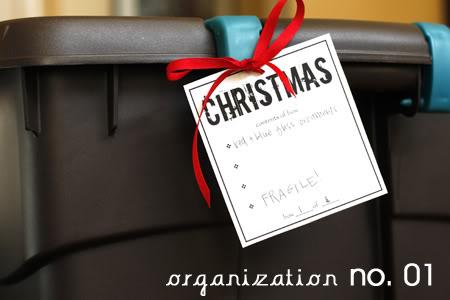 organization01