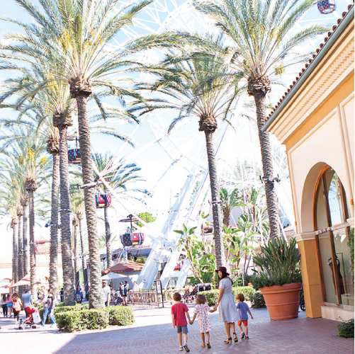 Family Travel // Things to Do Irvine