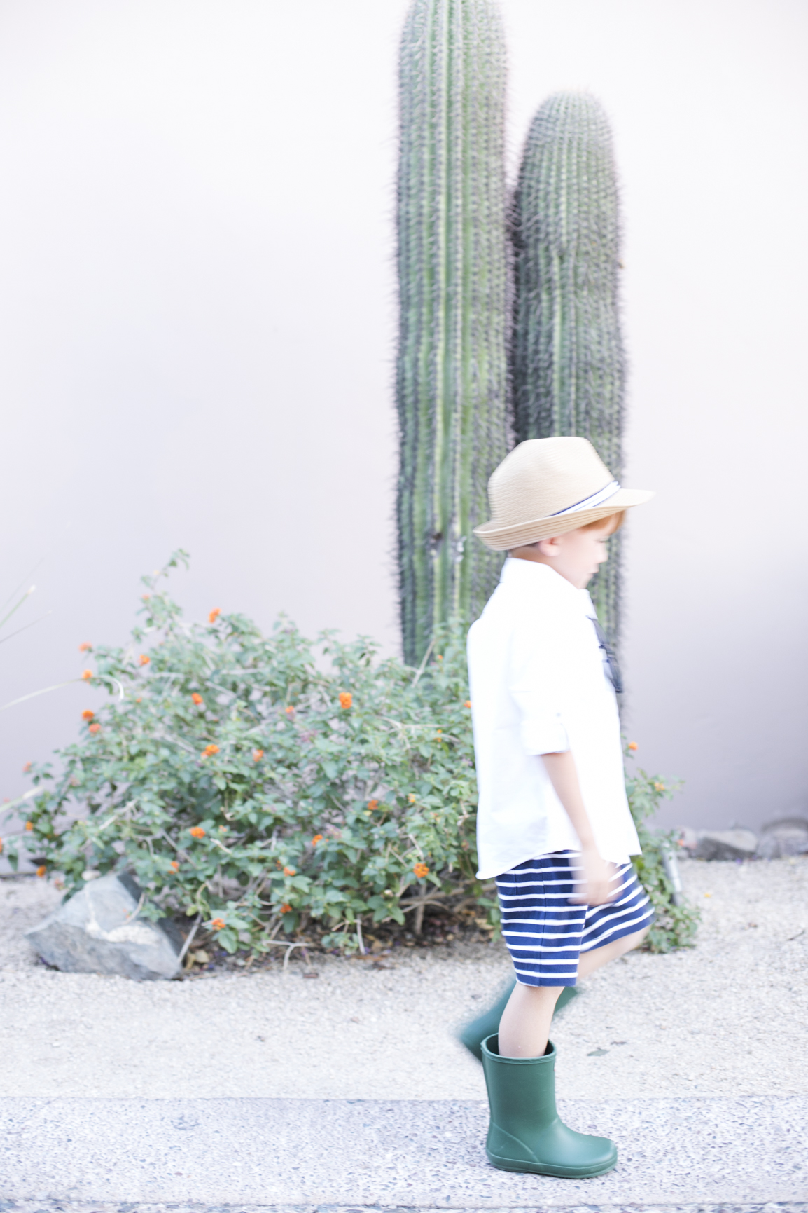 Boys Clothing and Fashion Janie and Jack Resort Wear