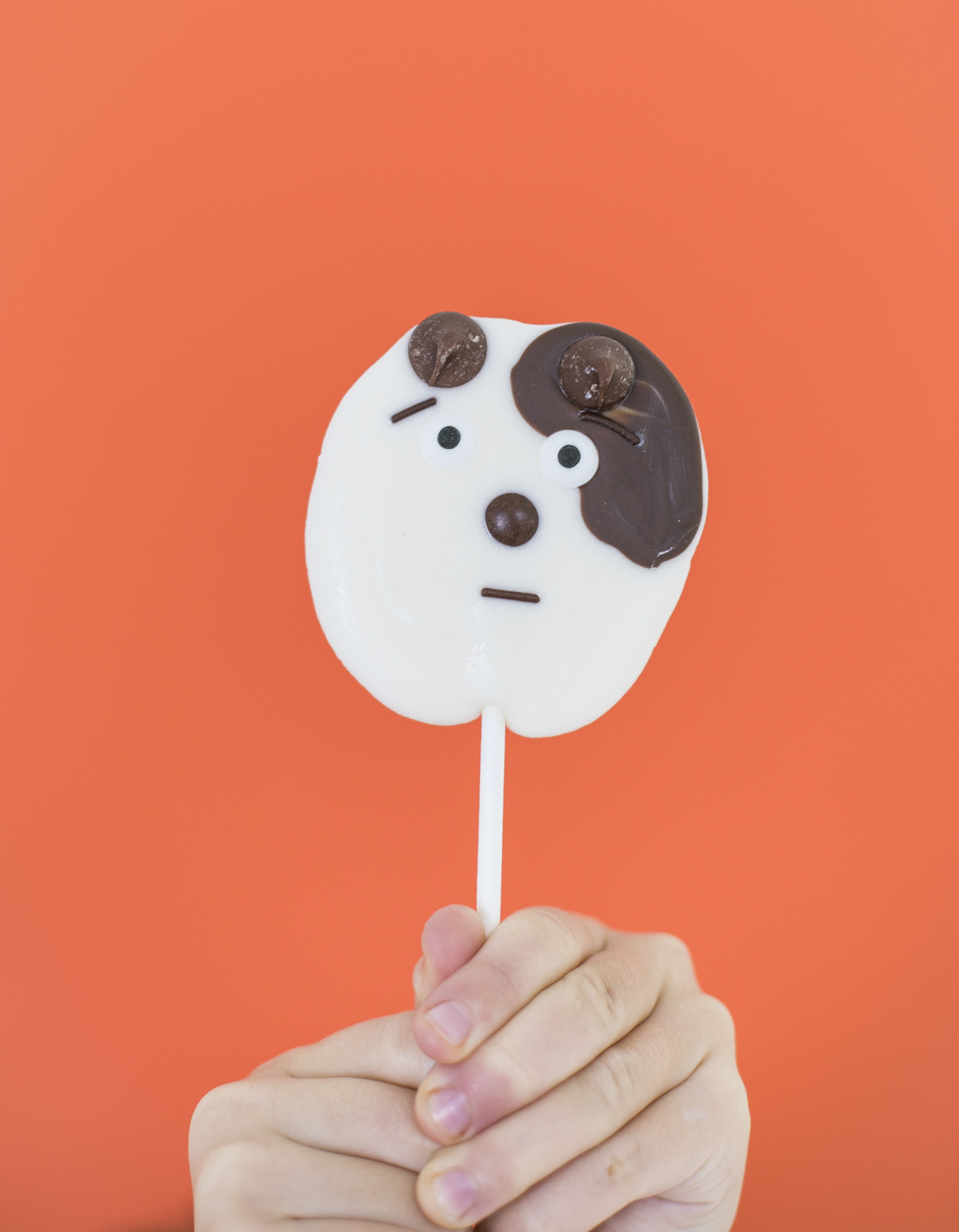 DIY Puppy Chocolate Pops