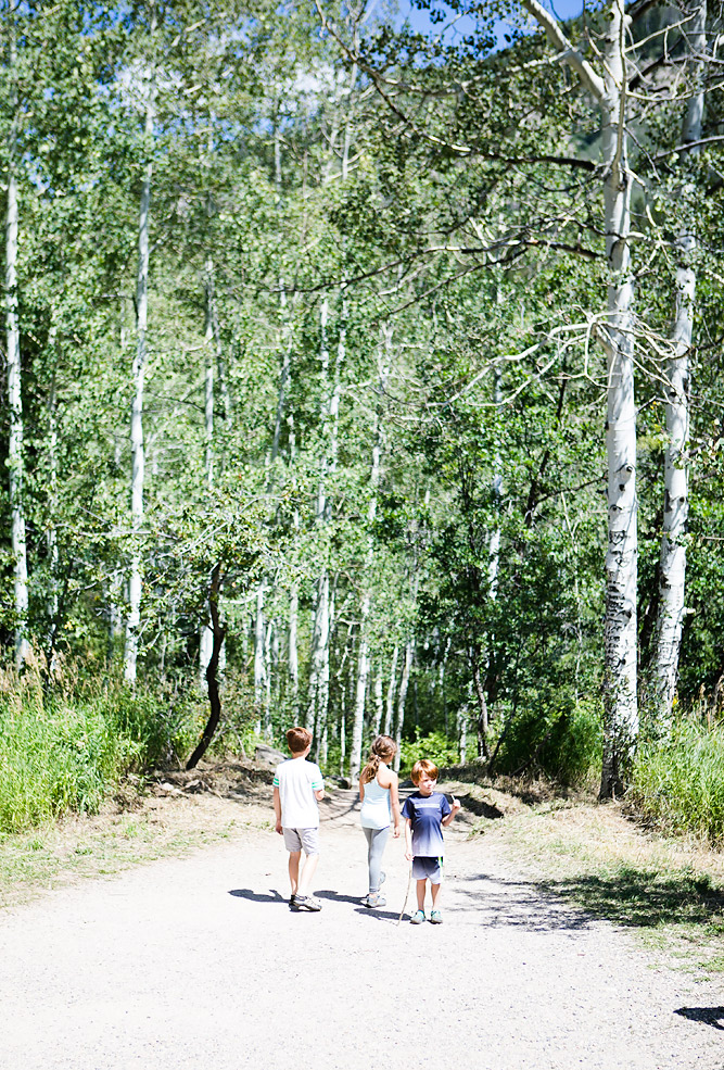 Fish Creek Falls Family Friendly Hikes in Steamboat Springs