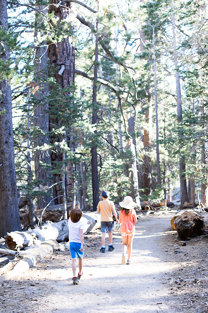 Palm Springs Aerial Tram Hikes